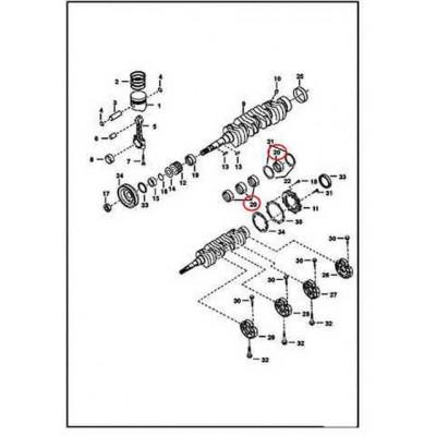 6655186 Вкладиші корінні, std (51,94 mm) Bobcat